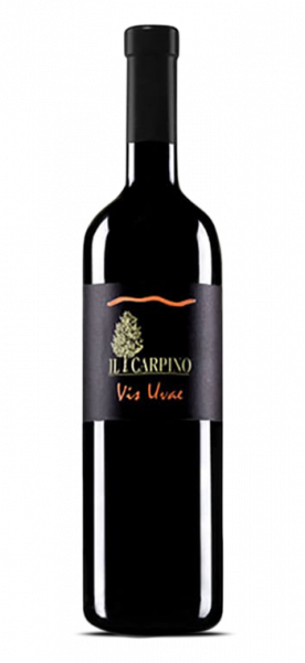 Il Carpino Pinot Grigio Vis Uvae IGT La Selezione 2013