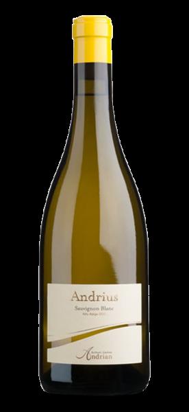 Andrian Sauvignon DOC Andrius 2019